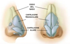 Rinoplastica - chirurgia del naso